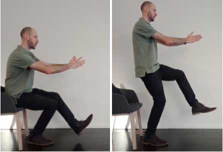 Sit to stand demonstration